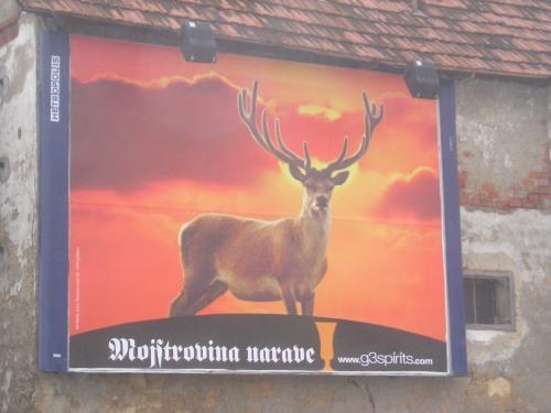 Mojstrovina narave street poster, Slovenia